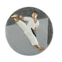 Karate műgyanta korong - FG304d