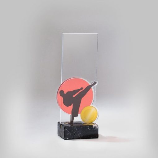 Akril díj - AC616