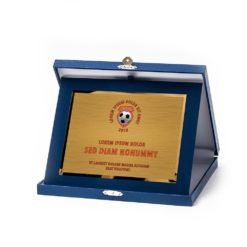 Műbőr dobozos plakett - DP01-G81X