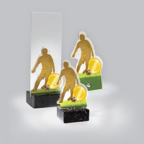 Akril díj - AC821