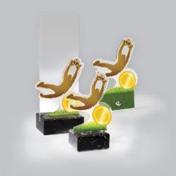 Akril díj - AC823