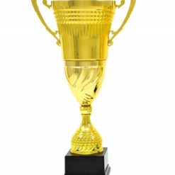 Közepes méretű arany kupa-1004