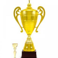 Nagy méretű arany kupa-1999A